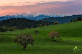 Pohľad na hrebeň Nízkych Tatier z  Podpoľania