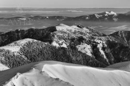 zimná krajina (bw)