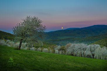 mesiac nad Brdárkou