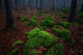 Kremenia, Kremnické vrchy