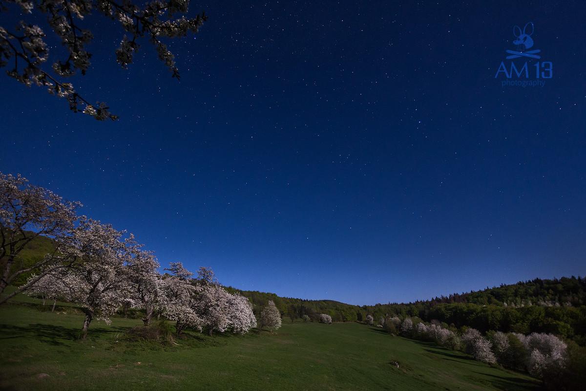 noc v čerešňovom sade, Brdárka