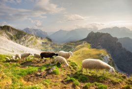 Slovinsko | Mangartské sedlo
