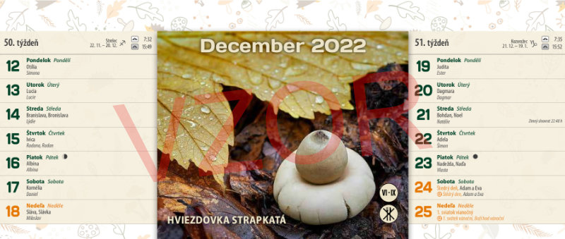 strana kalendára
